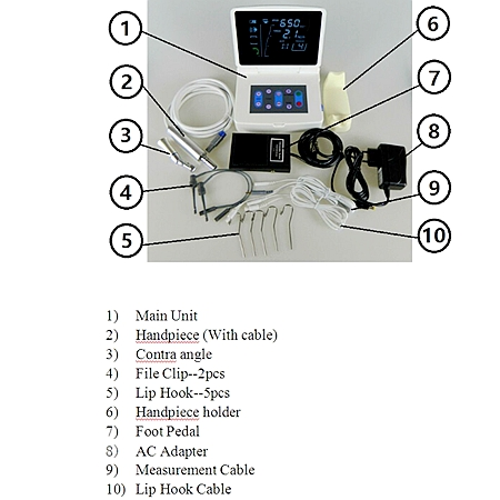 Dental Root Canal Apex Locator