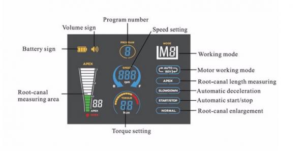 Endo motor with apex locator